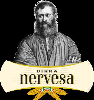 logo-nervesa