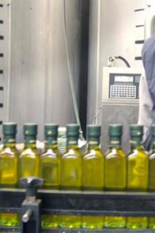 olio-oliva-tunisia-europa-lodi-notizie