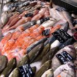 pesce-banco