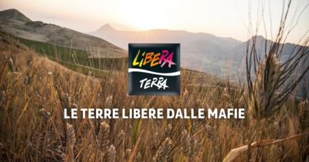 Libera Terra: a tutta mediterraneità, con pasta, pomodoro e olio biologici di alta qualità